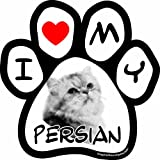 Imagine This I love My Persian Image Paw Car Magnet, 5-1/2-Inch by 5-1/2-Inch