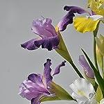 LI-HUA-CAT-2-Heads-Silk-Cloth-Alice-Iris-Artificial-Flowers-Fake-Flower-Home-Decoration-Wedding-Decor-Table-Decor-Party-Shop-Decor-Plastic-Flower-DIY-Purple
