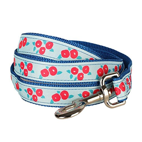 "Blueberry Pet Durable Spring Scent Inspired Flower Aquamarine Dog Leash 6 ft x 3/8"" for Puppy, X-Small, Nylon Leashes for Dogs"