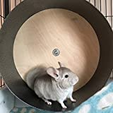15'' Chin Spin - Small Animal Exercise Wheel - Handmade in USA