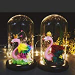 LED-Flamingo-Everlasting-Flower-Glowing-Glass-Cover-Handmade-Roses-Home-Accessories-Valentines-Day-Christmas-Birthday-Wedding-Colorful-Queen