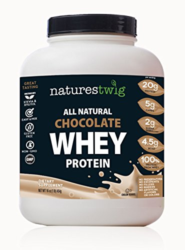 NaturesTwig All Natural Chocolate Whey Protein 1 Pound (Kosher- Cholov Yisroel)