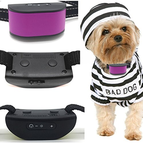 Classic 680-DCV Purple (Rechargeable Vibration) No Bark Dog Collar (Mini & Small Dogs 4lbs Plus) Bark Training Solution. (New Smart CHIP Technology 2019) 100% Lifetime Product Warranty Review