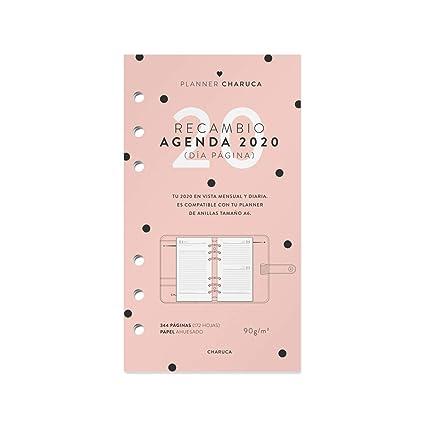 Recambio agenda 2020. Vista diaria. A6: Amazon.es: Oficina y ...