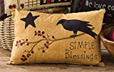 Park Designs Simple Blessings Decorative Embroidered Accent Pillow with crow, Tan, 14X9
