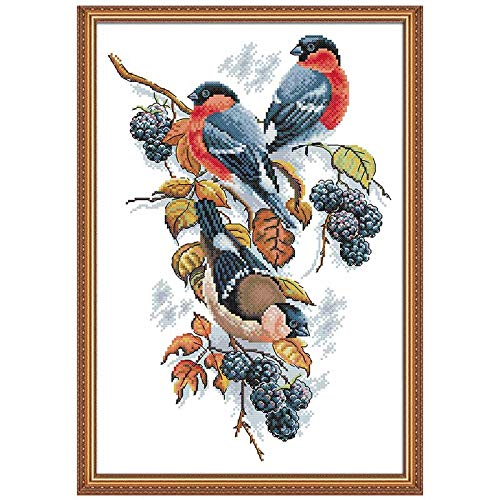Joy Sunday Red Bellies Magpies and Blackberries Counted Cross Stitch Kits,DIY DMC Floor Sewing White Blank Fabric 14 Count 13''x18'' -