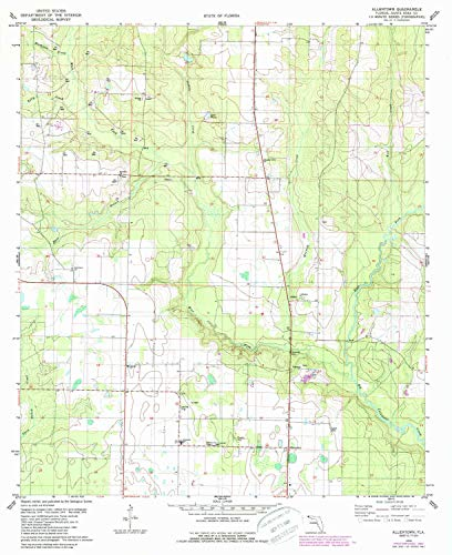 YellowMaps Allentown FL topo map, 1:24000 Scale, 7.5 X 7.5 Minute, Historical, 1978, Updated 1987, 26.9 x 22 in - Tyvek