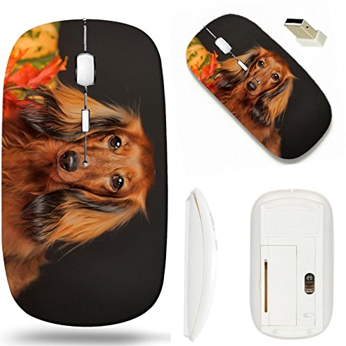 MSD Wireless Mouse White Base Travel 2.4G Wireless Mice with USB Receiver, Noiseless and Silent Click with 1000 DPI for notebook, pc, laptop, computer, mac book design 23884274 long haired dachshund i