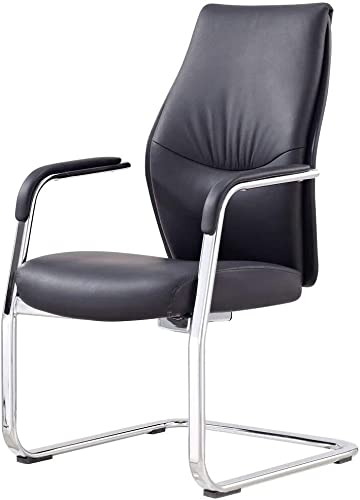 Modern Franklin Leather and Chrome Side Chair