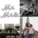 Overstep LGBT Wedding Decoration Mr&Mr/Mrs&Mrs