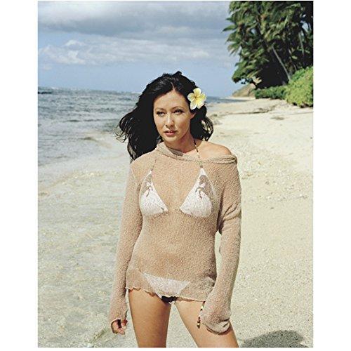 Charmed Shannen Doherty Posing in Bikini on Beach 8 x 10 Inch Photo