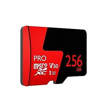 Tarjeta de memoria de 256 GB, tarjeta Mini TF Nivel de ...