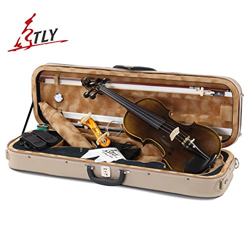 TLY Solid Wood Professional Acoustic Violin 100% Handmade Varnished Natural Fiddle Outfit (Handmade Solid Wood)