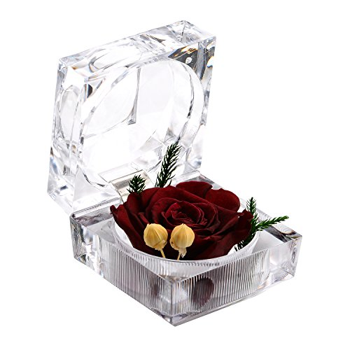 A-SZCXTOP Preserved Fresh Flower Never Withered Flower Last a lifetime Eternal Life Flowers with Crystal Ring Box , Gift for Valentine's Day And Wedding