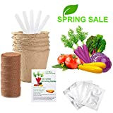 Valentine's Day Best Gift Vegetable Garden Seed Growing Starter Kit Indoor For Kids Easily Grow 5 Fresh Veggie Garden Kit Tomatoes,Purple Carrot,Rainbow Chard,Brussel Sprout Shipping From US
