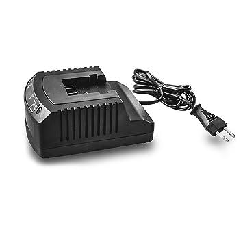 Ikra 40 V Cargador de batería con indicador LED, R3 – 360 – 1 A de 02