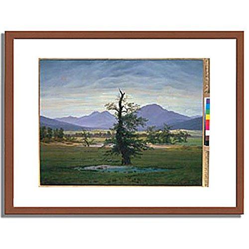 カスパーダヴィッドフリードリヒ「Der einsame Baum (Dorflandschaft bei Morgenbeleuchtung) (see also image number 1433. 1823. 」 インテリア アート 絵画 プリント 額装作品 フレーム:木製(茶) サイズ:M (306mm X 397mm) B00L7CEB4Q 2.M (306mm x 397mm)|1.フレーム:木製(茶) 1.フレーム:木製(茶) 2.M (306mm x 397mm)