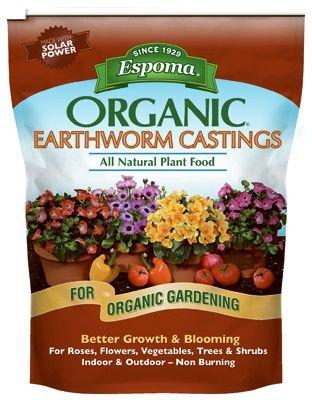 Casting Worm - 6
