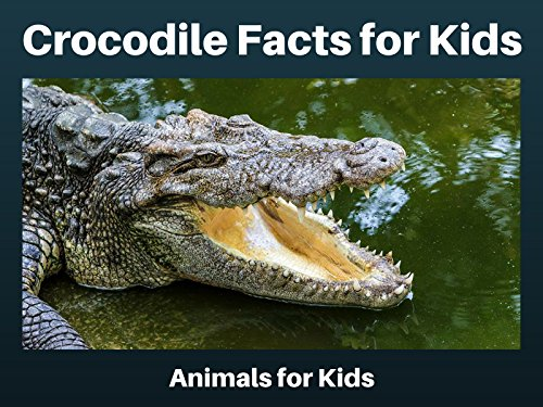 Crocodile Facts for Kids