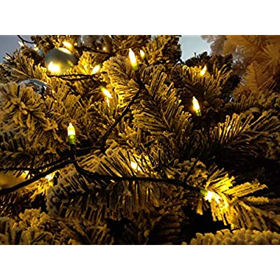 ASENEK Christmas Light, 33ft 100 LED Outdoor String Light with Timer & 8 Modes, 3AA Battery Operated Waterproof String Light for Outdoor and Indoor Décor – Warm White : Garden & Outdoor