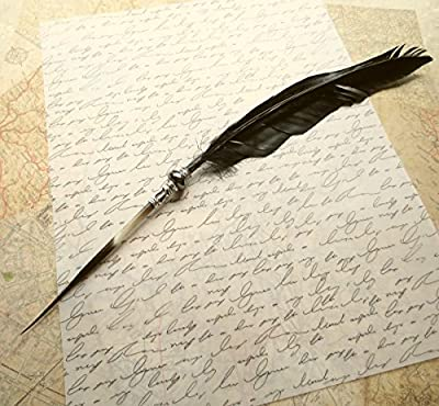 Steampunk Quill Pen Raven's Wing Ink Dip Porcupine Quill Feather Pen Photo film prop