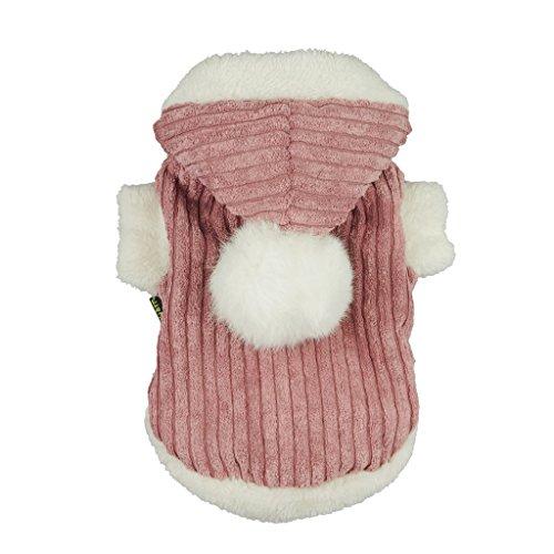 cloth harness dog - 6
