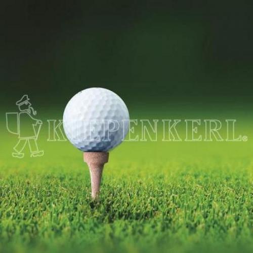 Kiepenkerl RSM 4.3 Golfrasen Abschlag 10 kg, Rasensamen, Rasensaat