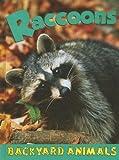 Raccoons, Jennifer Hurtig, 1590366697