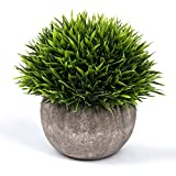 Small Fake Plant for Bathroom/Home Decor, The Bloom Times Artificial Faux Greenery for House Decorations (Potted Plants)