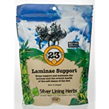 Silver Lining Herbs 23 Laminae Support, 60 scoops per bag