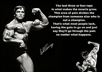Arnold Schwarzenegger Inspiration Bodybuilding poster 32 inch x 24 inch