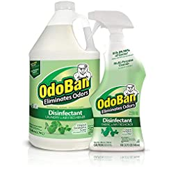 OdoBan Ready-to-Use 32 oz Spray Bottle &...