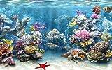 1/4 Sheet ~ Coral Reef Underwater Close Birthday ~ Edible Image Cake/Cupcake Topper!!!