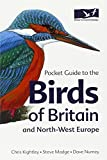 Pocket Guide to the Birds of Britain  an...