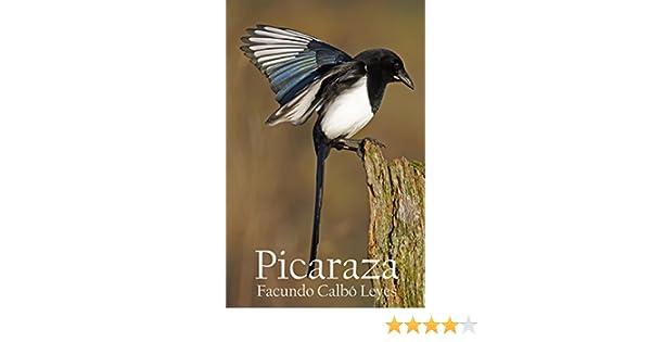 Picaraza: Más vale morir joven en una pelea de cuchillos en el sur que vivir eternamente en el norte.