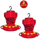 First Nature 3091 16-Ounce Hummingbird Flower Feeder (2 Pack)