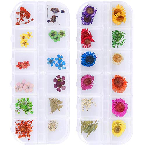 2 Boxes Nail Art Dried Flowers 12 Colors 3d Nail Stickers Real Dry Daisy Flowers Nail Decor Five Flower Nail Art Accessories