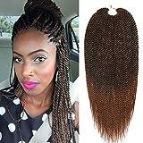 Best Hair For Crochet Braids - Mirra's Mirror (6Packs)14Inch Ombre Senegalese Box Braids Crochet Review