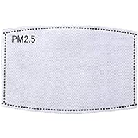 Ggdoo Filtrar 60 PCS Anti PM2.5 N95 carbón