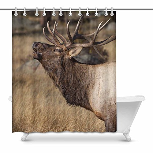 InterestPrint Deer Wilderness Elk in Rocky Mountain National Park Waterproof Shower Curtain Decor Fabric Bathroom Set with Hooks, 60(Wide) x 72(Height) Inches