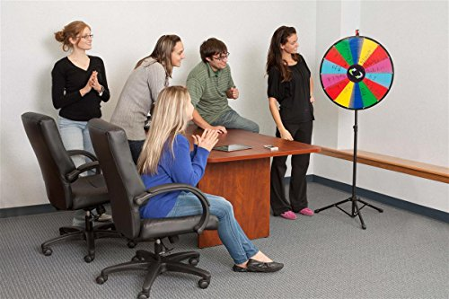 Prize Wheel with Height-Adjustable Floor Stand, 24'' Write-on Surface for Wet or Dry-Erase Markers, 14 Prize Slots, with Carrying Bag by Displays2go (Image #3)