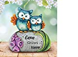 Captivating,Cute and Colorful Love Grows Here Double Owl Statue,Perfect Addition to Any Garden Where Flowers Bloom and Love Grows