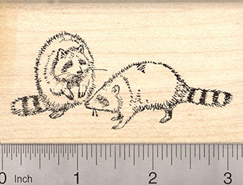 Racoon Rubber Stamp, Raccoons Playing