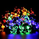 Nufelans_String Light Flower Lights Fairy Lamp Home Decoration for Wedding Party Garden Indoor Outdoor 1.2M 10LED (Multicolor)