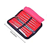 Dental Tools, 9 PCS Stainless Steel Dental Cleaner Dentist Tools For Tooth Cleaning Care
