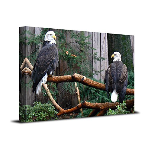 Royllent Bald Eagle 1 Panel Framed Wall Art 16x24inch Painting The Picture Print On Canvas For Home Decor Decoration Gift piece (Stretched By Wooden Frame,Ready To Hang) RA-CP0070 ()