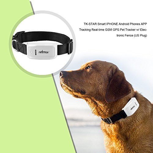 TK-STAR PeT GPS/GSM Tracker for Cats / Dogs with Collar,Real time Tracking,FREE Web Platfrom,Smart iPhone Android Phones APP Tracking, Electronic Fence (US Plug)