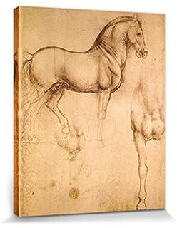 Cuadro sobre lienzo, enmarcado, listo para colgar, Leonardo da ...