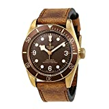 Tudor Heritage Black Bay Bronze Mens Watch M79250BM-0005
