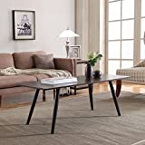 Divano Roma Furniture Modern and Simply Designed Coffee Table (Dark Brown)